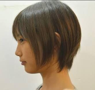honda_yoko2012